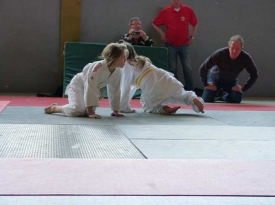 Judo-Beobachtung