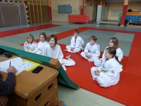 Judo-Kritik