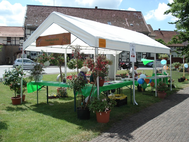 Markt der Vereine