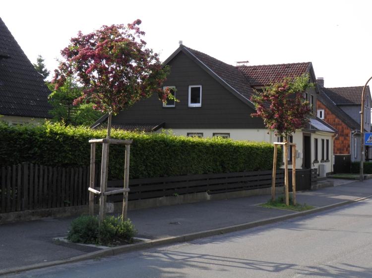 Harzstraße