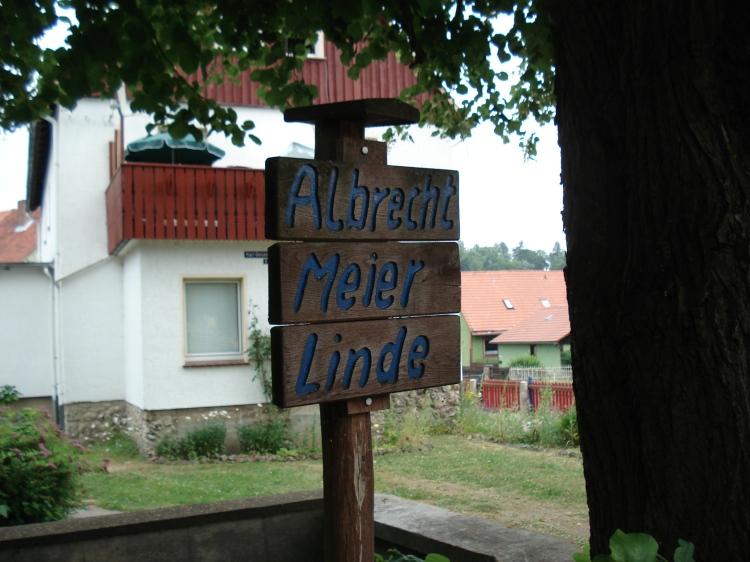 Albrecht-Meier-Linde
