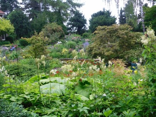 Karl-Foerster-Garten